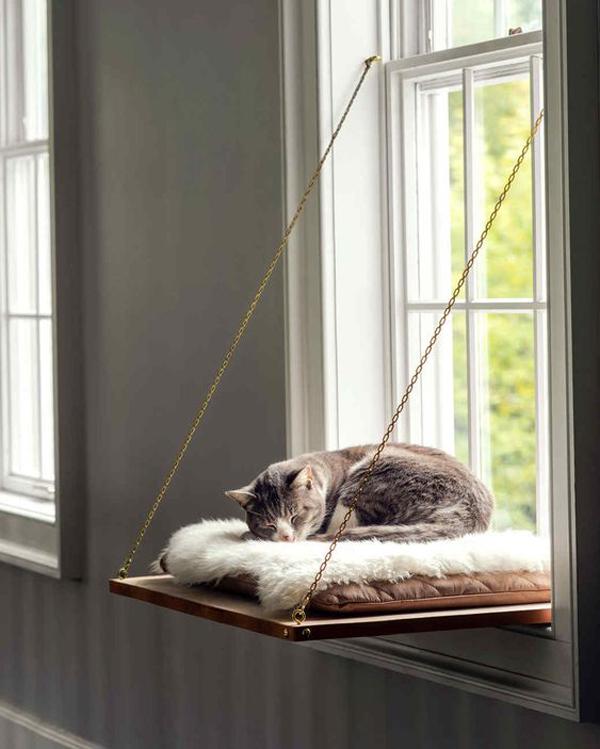 Cat-window-perch-ideas
