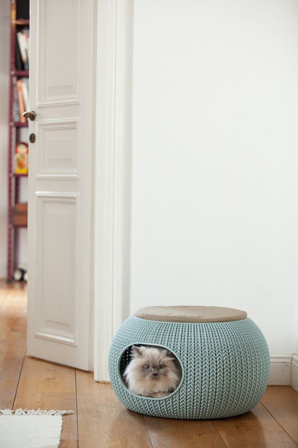 Cozy-cat-bed-with-blue-color