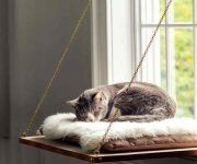 Creative-cat-furniture