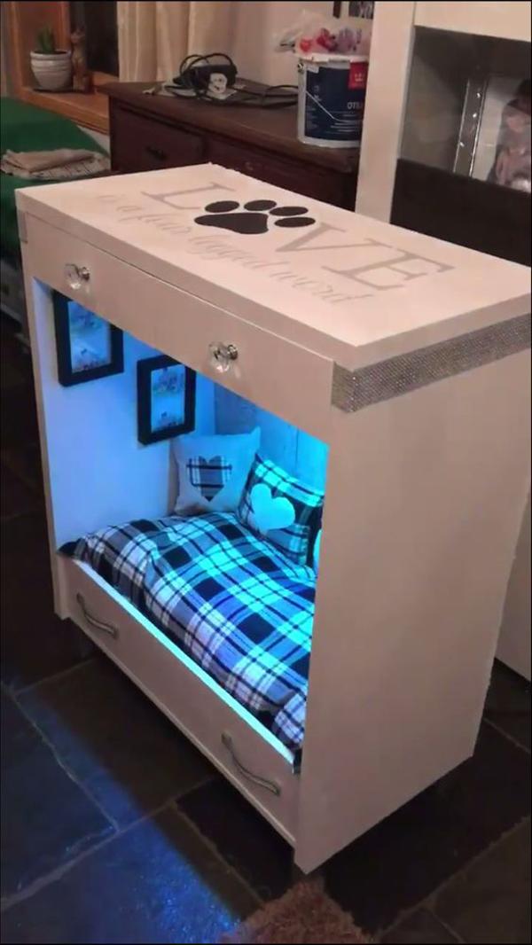 Modern-dog-house-design-with-blue-lighting
