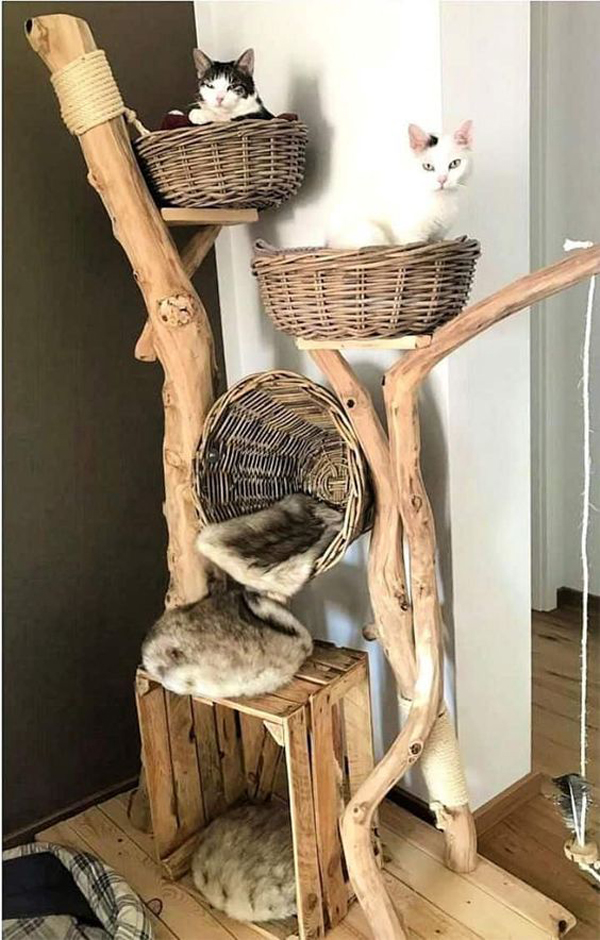 Cat-tree-house-with-basket-placed
