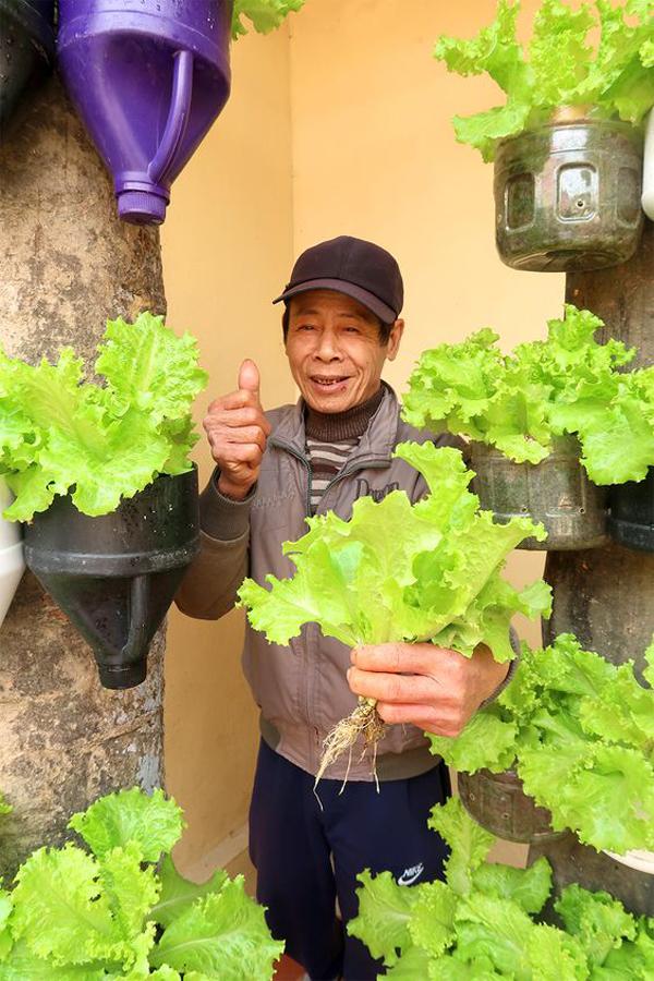 Smart-vertical-vegetables-garden