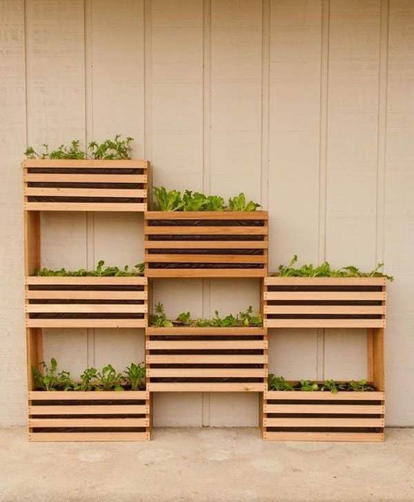 Vertical-garden-in-a-space